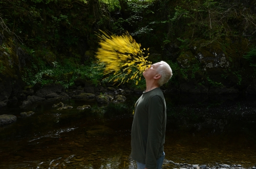 Available Light Cinema: Leaning into the Wind – Andy Goldsworthy